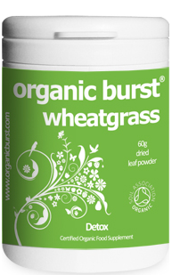 Pot Of Wheatgrass At Whole Foods