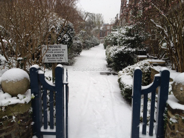 Chelsea in the Snow
