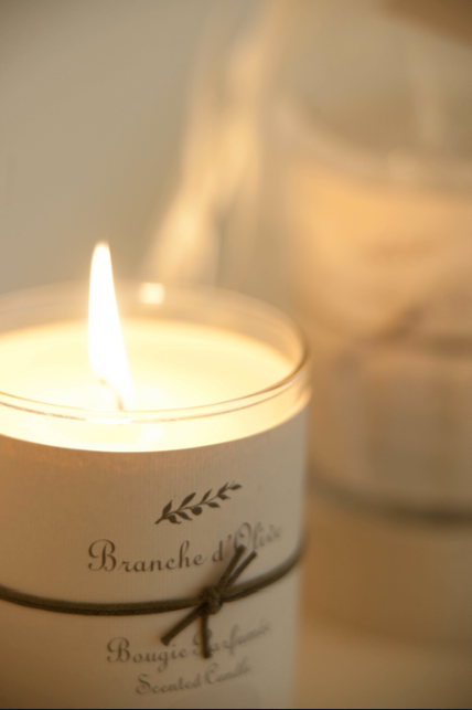 Branche dolive lit candle